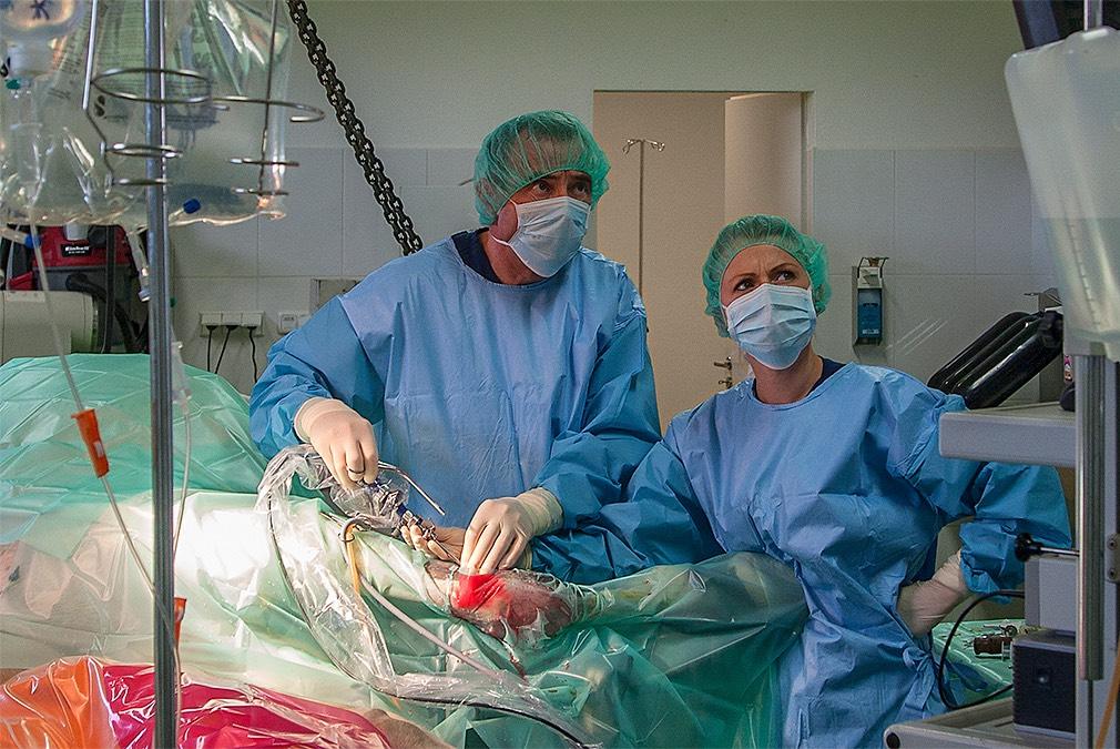 Pferdeklinik am Kirchberg, OP Unterstützungsband, Dr. med. vet. Uwe Heidbrink